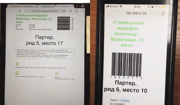 Образец электронного талона на открытое событие Гринвей в Краснодаре